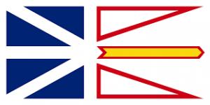 NF Flag