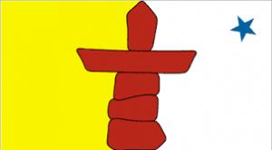 NNV Flag