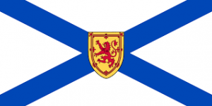 NS Flag