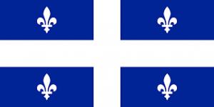 QC Flag